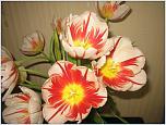 Нажмите на изображение для увеличения Название: весна 2013 045.jpg Просмотров: 0 Размер:178.1 Кб ID:396334